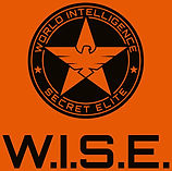 W.I.S.E. Logo.jpg