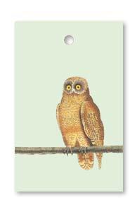 Mellow Owl tag