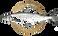 Logo-Maier-gold.png