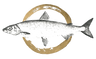 Dori Maier Fischerei Ambach Starnbergersee See Fischerei Huber Räuchrfisch Fischplatte Fischladen Tradition Rezepte Lierferung Fischer Martin Maier