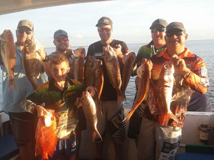 Snapper for everyone