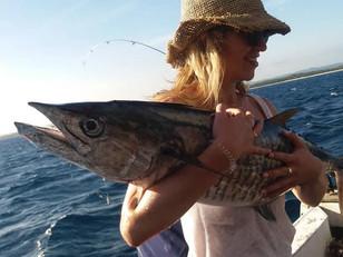 Awesome Spanish Mackerel