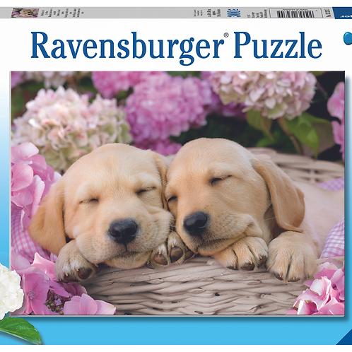 Ravensburger Пазл на 300 элементов  Милые собачки в корзинке