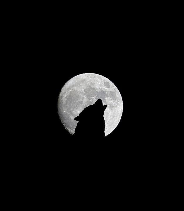 full-moon-1902260_960_720.jpg