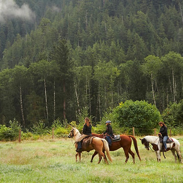 women's horse back riding lessons