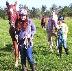 harmony horsemanship napanee