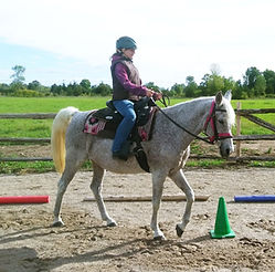 horseback riding lessons kingston