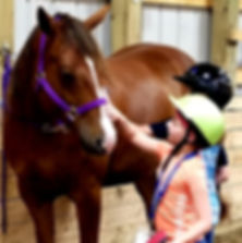 horsemanship lessons for kids