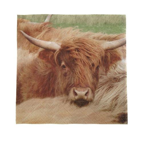 Highland Cow Napkins