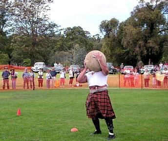 strong man throwing stone at geelong highland gathering