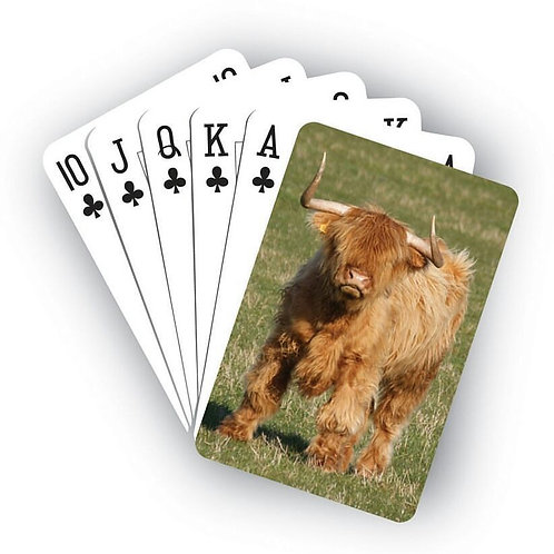 Playing Cards - Highland Cow