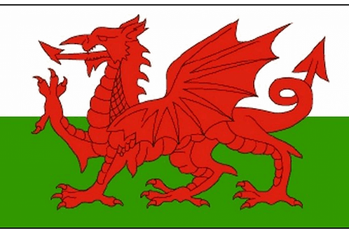 Wales Flag - Size Small, Standard and Bunting