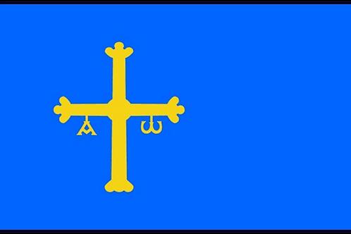 Asturias Flag - Size Standard
