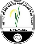 IRAG.png