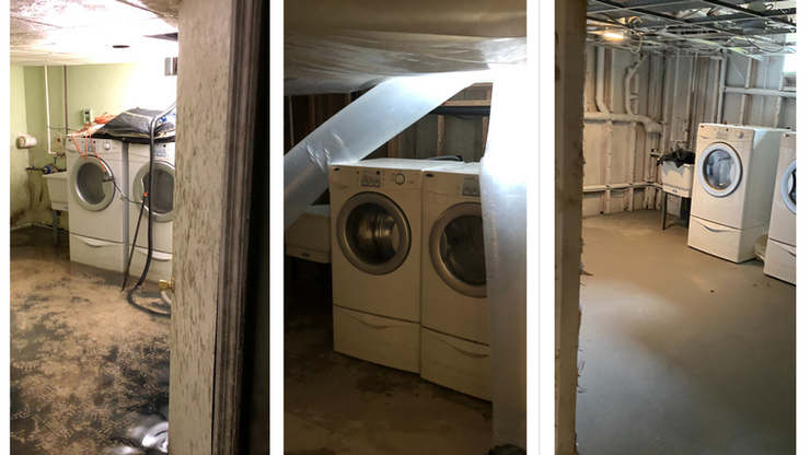 Basement Goes From Mold Covered to Mold Free