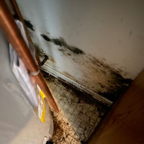 Check For Mold Near Your Water Heater