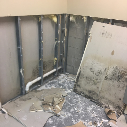 Sewage in Edison Leads to Mold Discovery