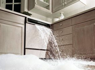 54ff39d34f8f1-overflowing-dishwasher-sud