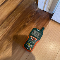 Moisture Meter Shows Trouble