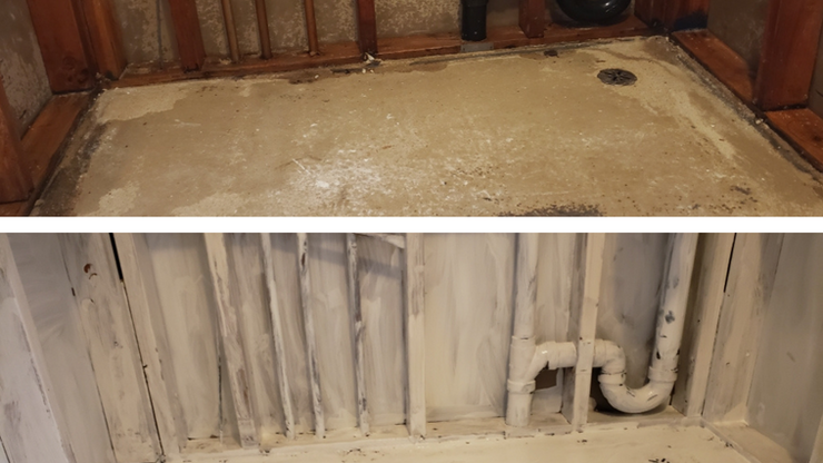 Making Sure Mold Doesn't Return