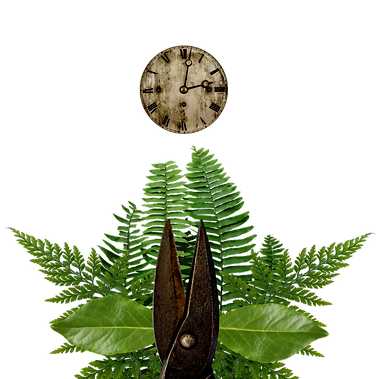 sidepiece clock.png