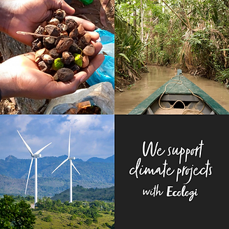 We support climate projects with Ecologi
