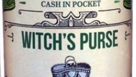 Candle Witches Brew Witches Purse