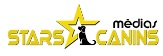 starscaninsmedias-noir-.png
