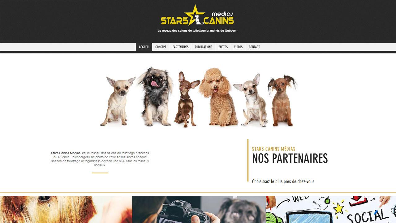 stars-001.jpg