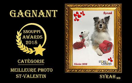 2018-08-Snouppi Awards St-Valentin.jpg