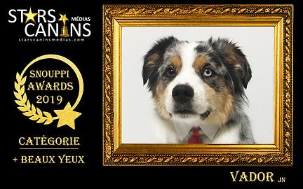 2019-01-Snouppi Awards Yeux.jpg