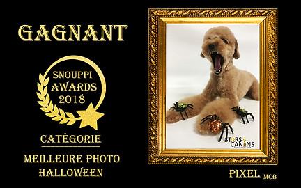 2018-06-Snouppi Awards Halloween.jpg