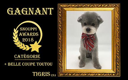 2018-05-Snouppi Awards Coupe Toutou.jpg