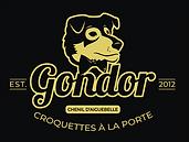 Gondor-FondFonce-CMJN.png
