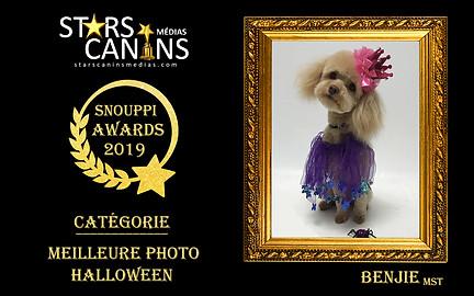 2019-06-Snouppi Awards Halloween.jpg