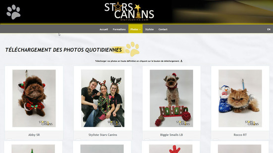 starscanins-002.jpg