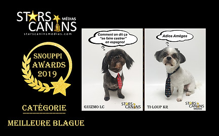 2019-11-Snouppi Awards Blague.jpg