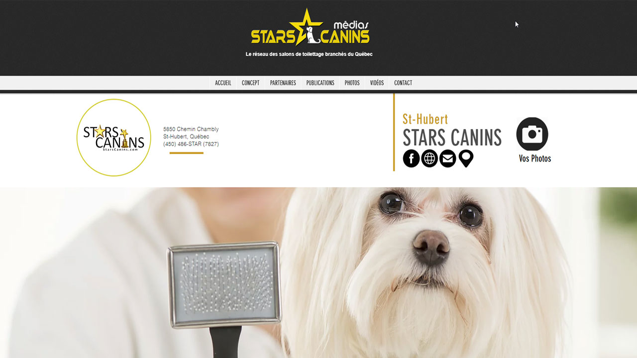starscanins