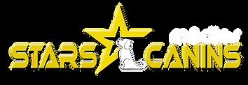 starscaninsmedias-blanc.png