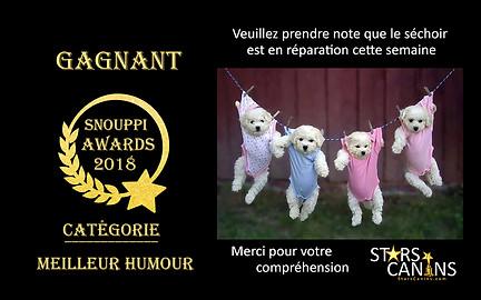 2018-10-Snouppi Awards Humour 016.jpg