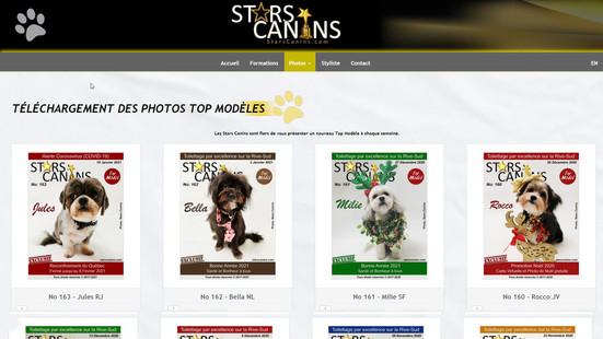 starscanins-003.jpg