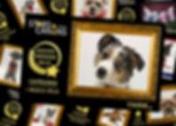 Mozaique Snouppi Awards Small.jpg