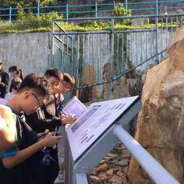 長洲宿營-考察東灣石刻,學習如何為古蹟評級