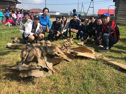 3 長毛象化石.jpg