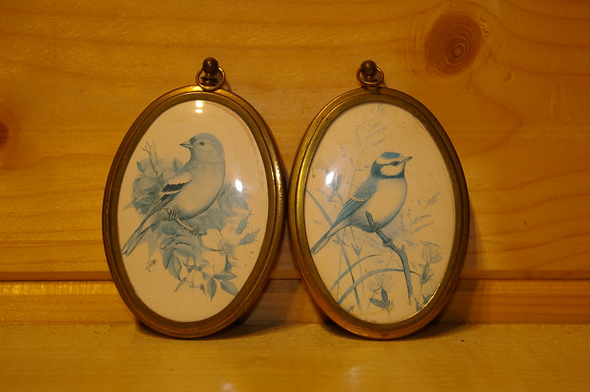 2 SMALL OVAL PICTURES OF BIRDS