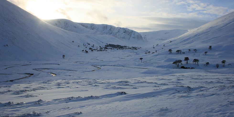 3 Day Fundamentals Workshop - Alladale Wilderness Reserve, Scotland (31 Jan 2020)