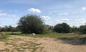 site of new BMX track.jpeg