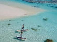 brando-stand-up-paddleboarding.jpg