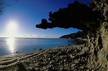 Island of Rurutu