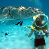 moorea-aquablue-helmet-dive.jpg